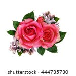 pink rose and lilac flowers... | Shutterstock . vector #444735730