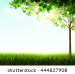 season tree with green leaves... | Shutterstock .eps vector #444827908