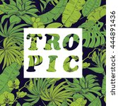 vector background with tropical ...   Shutterstock .eps vector #444891436