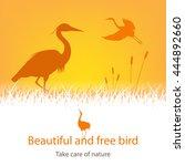 illustration of storks amongst... | Shutterstock .eps vector #444892660