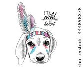 puppy beagle portrait in a... | Shutterstock .eps vector #444898378
