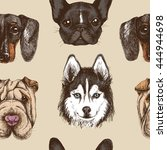 seamless pattern with purebred... | Shutterstock .eps vector #444944698