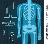 Body Radiography Isolated Icon...