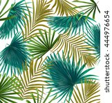 green leaves of palm tree on... | Shutterstock . vector #444976654