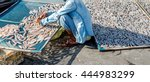 small salted fish dried under...   Shutterstock . vector #444983299