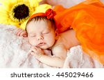 sleeping newborn baby girl in a ... | Shutterstock . vector #445029466