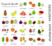 hand drawn tropical fruits... | Shutterstock .eps vector #445073590