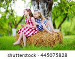 two little sisters sitting on a ... | Shutterstock . vector #445075828