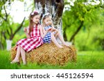 two little sisters sitting on a ... | Shutterstock . vector #445126594