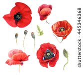 collection of watercolor red...   Shutterstock . vector #445346368