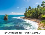 Wild Caribbean Beach Of...