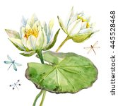 Watercolor With White Lotus...