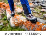 trekking and hiking boots... | Shutterstock . vector #445530040