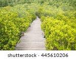 walkway with wooden bridge... | Shutterstock . vector #445610206