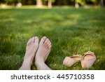 shoes standing nearby.... | Shutterstock . vector #445710358