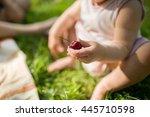 baby girl sitting on a grass... | Shutterstock . vector #445710598
