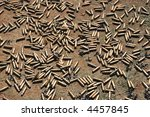 Bullet Shells Scattered On The...