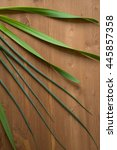 Small photo of Onion Allium nutans on wooden background