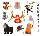 set of cartoon monkeys vector... | Shutterstock .eps vector #445937254