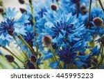 Summer Wallpaper Of Blue...