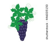 bunch of grapes | Shutterstock .eps vector #446035150