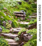 Stony Stairs In The Green...
