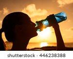 sports woman drinking bottle of ... | Shutterstock . vector #446238388