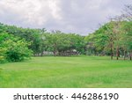 green nature on public park in... | Shutterstock . vector #446286190