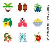 superfoods flat icons set. acai ... | Shutterstock .eps vector #446292889