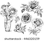 Roses. Hand drawn flower set