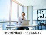 mature businessman sitting at... | Shutterstock . vector #446633158