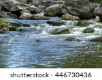 Forest Stream  Stream Water An...