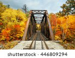 Railway Bridge In Woods With...