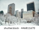 central park winter with... | Shutterstock . vector #446811670