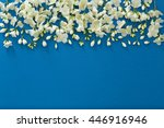 fresh jasmine flowers  on color ... | Shutterstock . vector #446916946