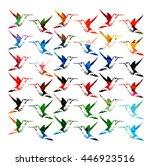 colorful hummingbirds... | Shutterstock .eps vector #446923516