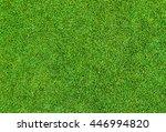 background of beautiful green... | Shutterstock . vector #446994820
