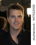 chris o'donnell at the los... | Shutterstock . vector #447022030