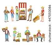 farm vegetables market and... | Shutterstock .eps vector #447053086