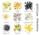 great highly detailed set of... | Shutterstock . vector #447121639
