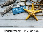 adventure ocean sea starfish... | Shutterstock . vector #447205756