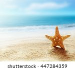 starfish on the beach and ocean ... | Shutterstock . vector #447284359