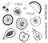 hand drawn sketch set of  pear  ... | Shutterstock .eps vector #447307264