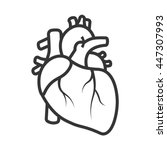 realistic heart icon isolated... | Shutterstock .eps vector #447307993