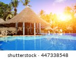house with blue swimming pool... | Shutterstock . vector #447338548
