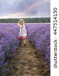 among the lavender fields ... | Shutterstock . vector #447514150