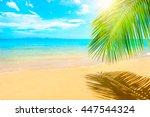 beautiful sunny beach. view of... | Shutterstock . vector #447544324