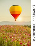 hot air balloon on sun sky with ... | Shutterstock . vector #447562648