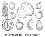 delicious vegetarian dessert... | Shutterstock .eps vector #447578644
