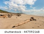 Driftwood On Sandy Beach At...